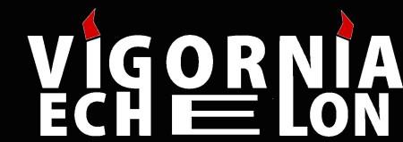 logo_vigornia12 goyesto 12 en blanco letras